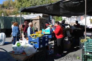 Fruit and veg market at Pitres